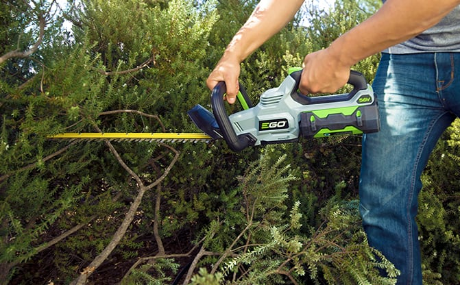 Man using the Brushless Hedge Trimmer to trim bushes