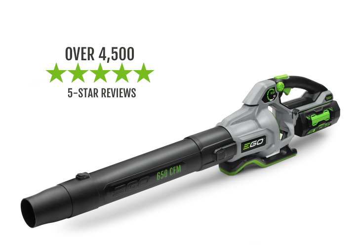 The 650 CFM Blower has over 2,700 5-star reviews